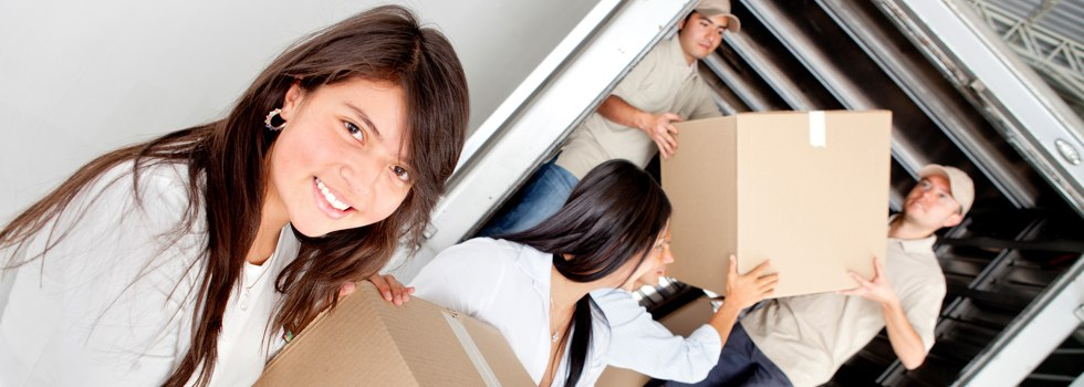 Professional Removalists Acacia Creek
